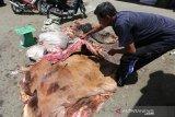 Pedagang pengumpul menata kulit sapi hewan kurban di Banda Aceh, Aceh, Senin (12/8/2019). Kulit sapi dari hewan kurban dibeli dengan harga Rp5.000 per kilogram yang dijadikan sebagai bahan untuk pembuatan kerupuk dan kerajinan rumah tangga. (Antara Foto / Irwansyah Putra)