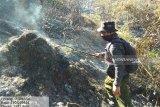 Dansatgas Karhutla minta semua pihak maksimalkan pencegahan kebakaran