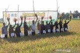 Petani Gunung Kidul panen padi 14 ton GKP per hektare