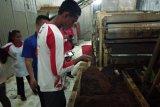 SMN 2019 NTT tinjau proses pembuatan teh Kayu Aro di Kabupaten Kerinci