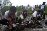 Tumbuhkan kesadaran lestarikan alam, SMN Kalsel tanam mangrove dan lepas tukik di Pariaman
