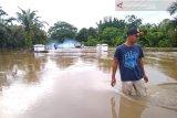Simpang Pasaman Baru Pasaman Barat langganan banjir setiap hujan