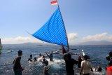Peserta melakukan start pada perlombaan perahu layar yang digelar di Pantai Ketapang, Banyuwangi, Jawa Timur, Minggu (25/8/2019). Perlombaan perahu layar yang diikuti ratusan nelayan di Perairan Selat Bali tersebut, selain untuk melestarikan olahraga tradisional juga sebagai pengembangan destinasi wisata di Banyuwangi. Antara Jatim/Budi Candra Setya/zk.