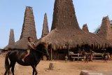 Tak ada korban kebakaran kampung adat di Sumba Barat Daya