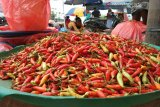Harga cabai rawit sentuh Rp90 ribu per kilogram