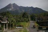 Guguran lava keluar dari Gunung Merapi sejauh 500-700 meter