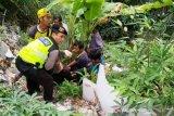 Depresi dtinggal mati sang ayah, siswi SMP ini nekad terjun ke sungai sedalam 10 meter