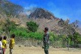 Bupati TTS: Jauhkan api dari hutan