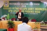 Asosiasi petani sawit Riau sepakat musuhi pembakar lahan, begini penjelasannya