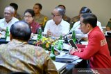 Government makes maximal efforts to fight land, forest fires