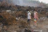 Anak-anak bermain di area kebakaran lahan gambut di kawasan Landasan Ulin, Banjarbaru, Kalimantan Selatan, Kamis (19/9/2019).Kota Banjarbaru kini berstatus darurat Kebakaran hutan dan lahan (Karhutla) karena paling terdampak Karhutla dan Satgas Karhutla bersama relawan pemadam kebakaran beserta warga terus berupaya memadamkan Karhutla yang terus meluas di sejumlah daerah Provinsi Kalsel.Foto Antaranews Kalsel/Bayu Pratama S.