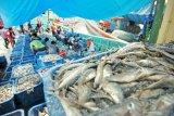 Hari Pangan Sedunia, Menteri KKP Edhy sebut perikanan solusi pandemi