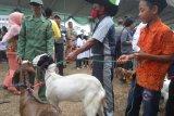 Anak yatim di Lampung Timur terima santunan seekor kambing