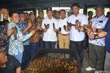 Pemprov Riau kembangkan wisata halal di Kabupaten Kampar