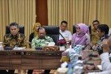 Tanaman Nilam solusi terbaik penuntasan kemiskinan Aceh