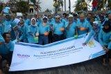 Peduli Kelestarian Lingkungan, PLN UIW NTB Lepas Tukik