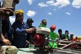 MDMC gelontorkan Rp60 miliar bantu korban bencana Sulteng