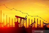 Minyak jatuh dipicu perkiraan surplus dan virus China