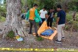 Mayat tinggal kerangka ditemukan di pinggir pantai