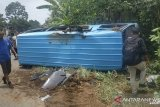 Ban pecah, mobil pengangkut atlet silat Mukomuko terguling di Jalinsum