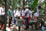 Di Lampung Timur ada wisata memanen madu