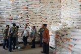 Bulog Riau Kepri targetkan serap 5.000 ton padi petani