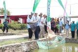 Wabup Sleman resmikan Budi daya Ikan Mandiri Inovasi bantuan Pertamina