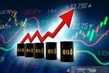 Harga minyak berjangka naik di tengah harapan pengurangan produksi