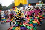 43 jasad orang ditemukan di Meksiko utara