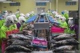 KKP: Investasi sektor kelautan dan perikanan di Indonesia didominasi China