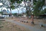 Mataram siapkan 15.000 bibit bunga untuk merevitalisasi Taman Udayana