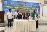 UMP Papua Barat 2020 naik menjadi Rp3,1 juta