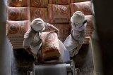 Pendapatan Semen Indonesia naik, laba malah anjlok