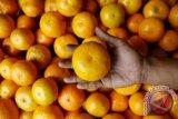 Terapi dengan jeruk