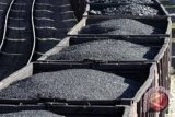 Apindo: Peta jalan batu bara perlu dibuat jangka panjang