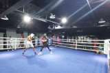 Hadapi Moekoena, Daud Yordan jalani latihan dengan mitra tanding 102 ronde