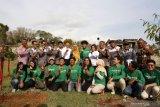 1.350 bibit pohon ditanam di Situs purbakala Ratu Boko