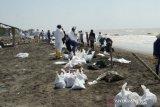Perairan Karawang kembali tercemar  limbah minyak mentah