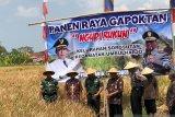 DPRD Kota Yogyakarta usulkan keringanan PBB lahan pertanian