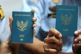 Petugas menunjukkan perbedaan Paspor Elektronik atau e-passport (kiri) dengan paspor biasa saat penerbitan Paspor Elektronik perdana di Kantor Imigrasi Kelas I Khusus Ngurah Rai, Badung, Bali, Rabu (20/11/2019). Kantor Imigrasi Kelas I Khusus Ngurah Rai, mulai menerbitkan paspor elektronik 48 halaman dengan biaya Rp650 ribu. ANTARA FOTO/Fikri Yusuf/nym.