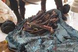 Ratusan senjata tajam disita dari lokasi pilkades yang berlangsung ricuh