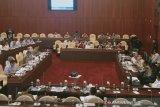 Komisi IV DPR minta kementerian/lembaga kaji perdagangan karang