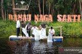 31 ribu benih ikan baung ditebar di Danau Naga Sakti Siak