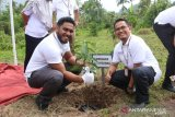 PLN UIW Sumbar tunjukan peduli lingkungan dengan tanam 1.500 pohon
