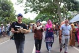 Flying Duck Race enters the West Sumatra event calendar