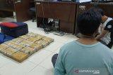 BNNP NTB menelusuri pemilik ganja 15 kilogram