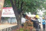 PLN bersihkan jalur jaringan  di Palembang seiring datangnya hujan