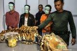 Penyidik limpahkan tersangka kasus pembunuhan harimau ke Kejari Pelalawan