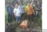 Hilang lima hari, seorang mahasiswi ditemukan tewas terkubur dibelakang kamar indekosnya