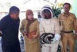Pegawai disengat tawon, petugas damkar beraksi